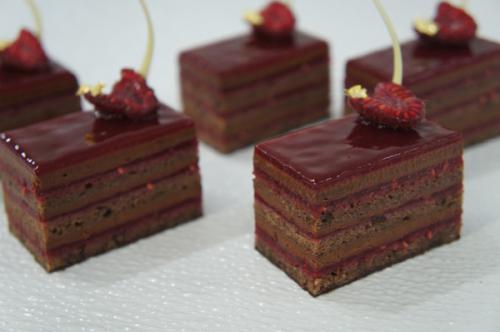 D Chocolate Cocoa Nib and Raspberry Slice9